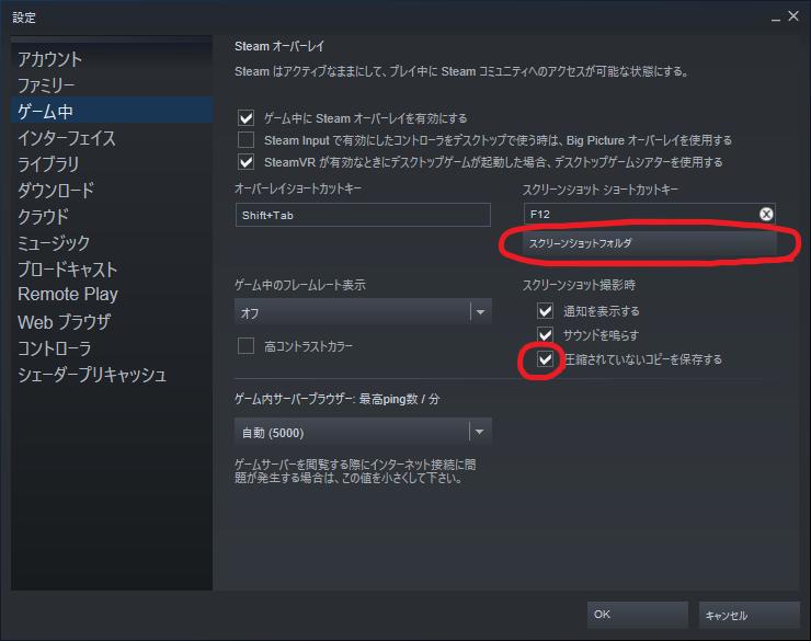 Steam_Screenshot_setting.png